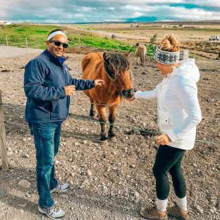A little throwback to feeding our Icelandic horse friend 🐎  Do you like horses? Yay or neighhhhh ?